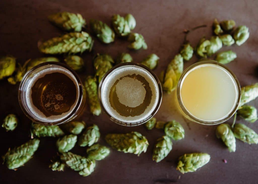Conos de lúpulo y 3 tipos de cerveza